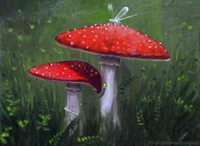 Funghi rossi abitati