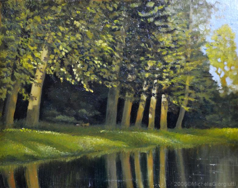 Minuscola volpe che corre tra gli alberi di un bosco in riva al lago