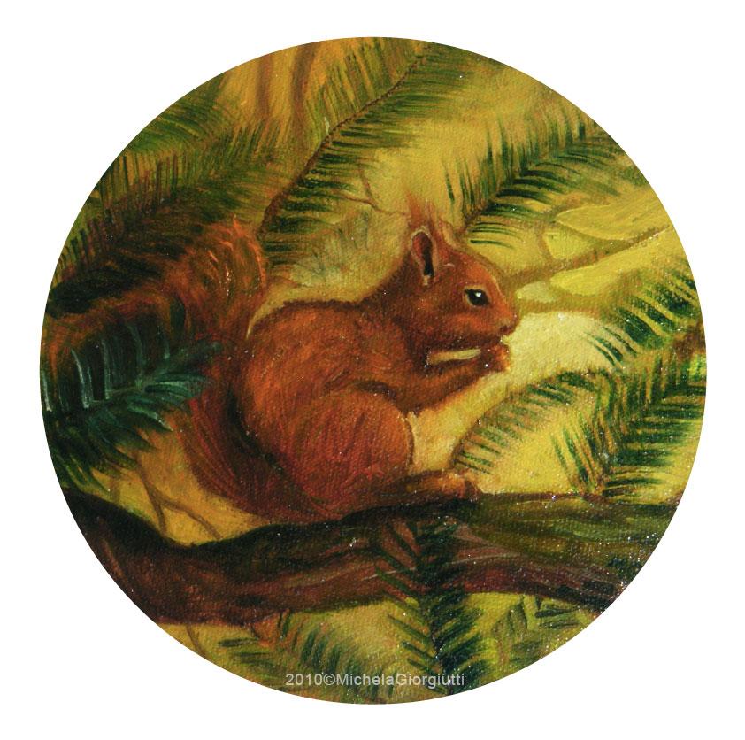 Scoiattolo su ramo di pino mentre mangia una noce