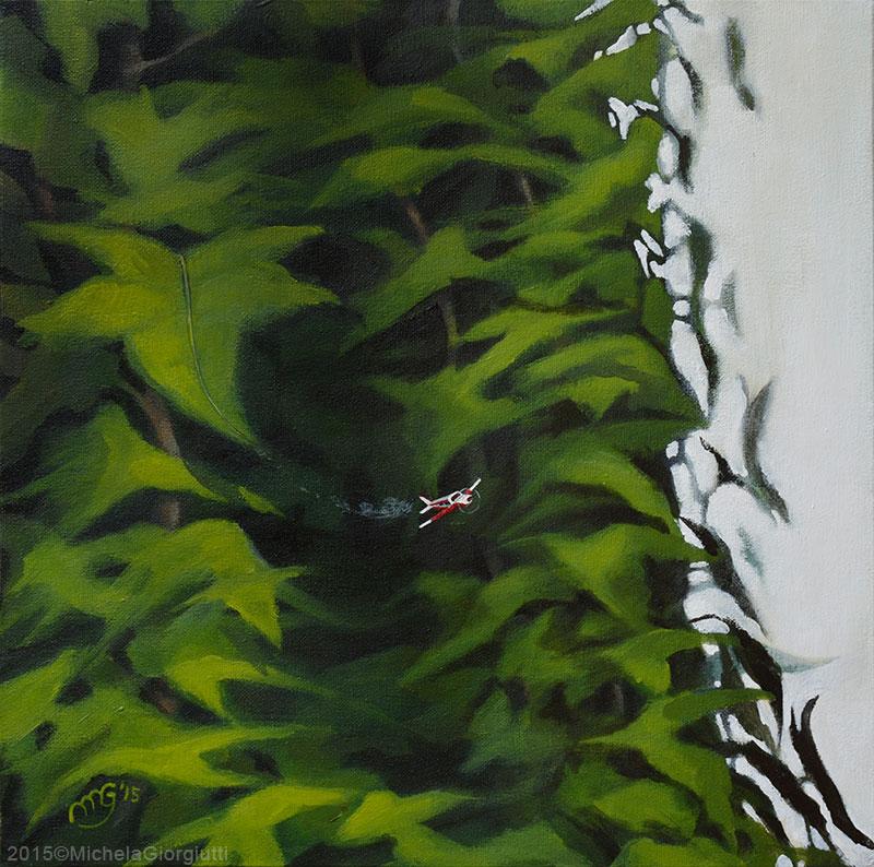 Aeroplano che decolla da foglie di edera