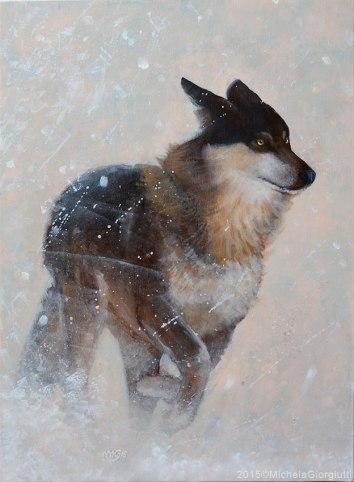 Lupo che corre nella tempesta di neve